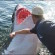 Ecology: Shark Conservation Strategy To Involve Cull Of Australian Surfers